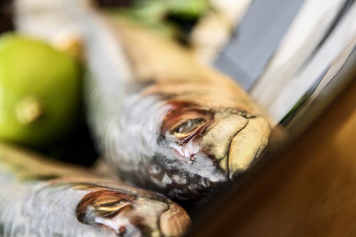 9karakter ételfotózás