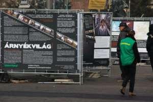 Fényzáró molinó – Greenpeace